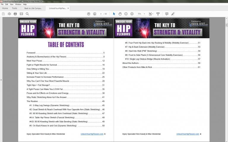 Here's a quick look at the table of contents of the product