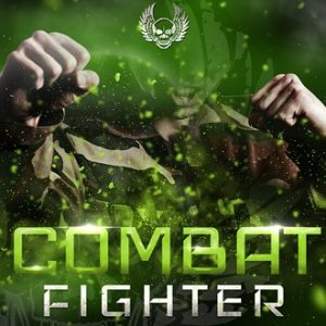 Combat Fighter System