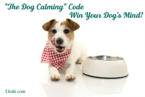 the dog calming