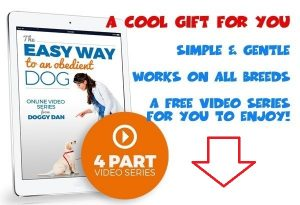 Easy-way-to-an-obedient-dog-Featured